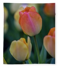 Spring Tulip Fleece Blanket