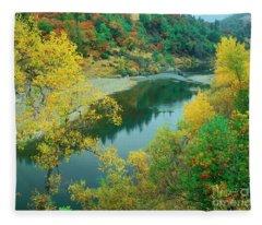 Stream Fall Color Fir Trees Central California Fleece Blanket