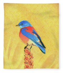 Western Bluebird Fleece Blanket