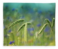 Blue Cornflower Fleece Blankets