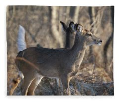 Wild Deer Fleece Blanket