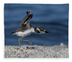Wilson's Plover Fleece Blanket
