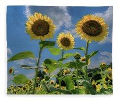 Windsor Castle Sunflowers Fleece Blanket
