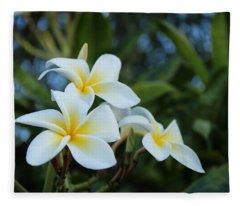 Yellow And White Plumeria Fleece Blanket