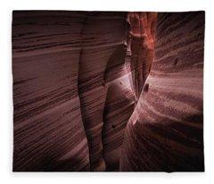 Zebra Canyon Fleece Blanket