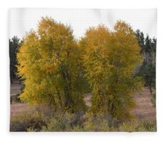 Aspen Trees In The Fall Co Fleece Blanket