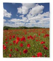 151124p076 Fleece Blanket
