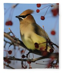 Cedar Waxwing... Fleece Blanket