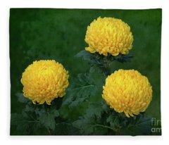 Chrysanthemum 'derek Bircumshaw' Fleece Blanket