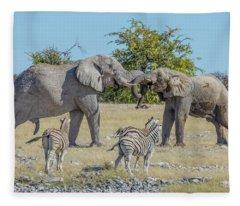 Etosha - Namibia Fleece Blanket