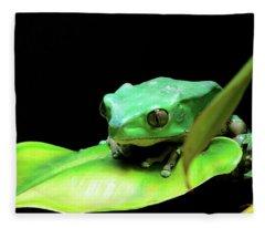 Re Upload Feeling Froggy Fleece Blanket