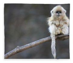 Golden Snub-nosed Monkey Rhinopithecus Fleece Blanket