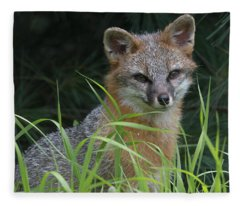 Gray Fox In The Grass Fleece Blanket