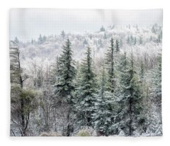 Iced Trees Highland Scenic Highway Fleece Blanket
