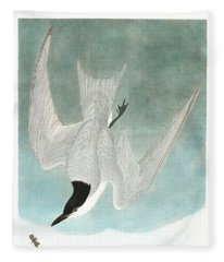 Marsh Tern Fleece Blanket