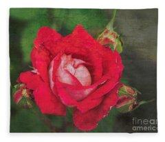 Rose Red Fleece Blanket
