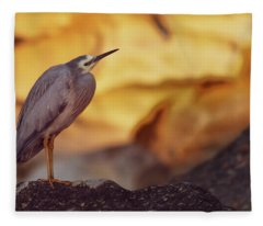 White-faced Heron At The Beach Fleece Blanket