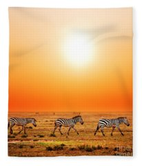 Zebras Herd On African Savanna At Sunset. Fleece Blanket