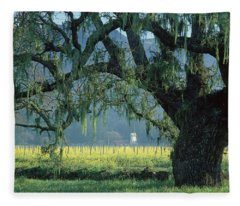 2b6319 Mustard In The Oaks Sonoma Ca Fleece Blanket