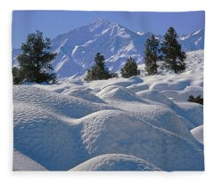 2m6402 Mt. Tom From Sherwin Grade Fleece Blanket