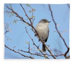 Black-tailed Gnatcatcher Fleece Blanket