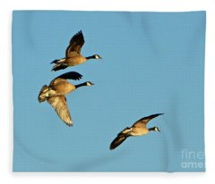 3 Geese In Flight Fleece Blanket