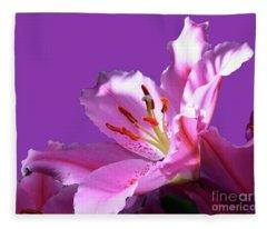 Pink And Purple Fleece Blanket