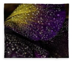 Purple And Yellow Fleece Blanket