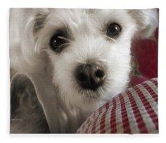 Yorkie Heichel Portrait 3 Fleece Blanket