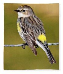 Yellow-rumped Warbler Fleece Blanket