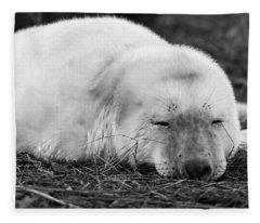 40 Winks Fleece Blanket
