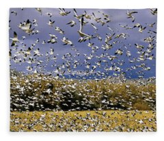 A Panoramic Of Thousands Of Migrating Fleece Blanket