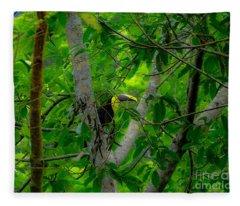 Chestnut-mandibled Toucan Fleece Blanket