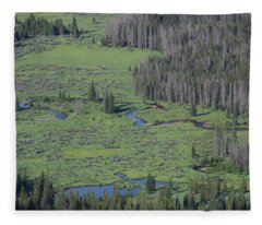 Scenery Rocky Mountain Np Co Fleece Blanket