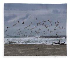 The Lost Coast Fleece Blanket