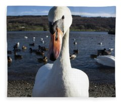 A Bit Close Fleece Blanket