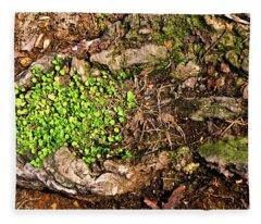 A Bowl Of Greens Fleece Blanket