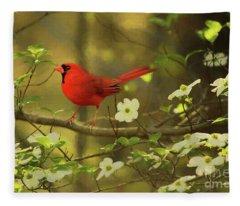 A Cardinal And His Dogwood Fleece Blanket