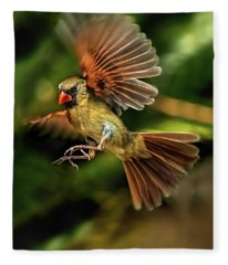 A Cardinal Approaches Fleece Blanket