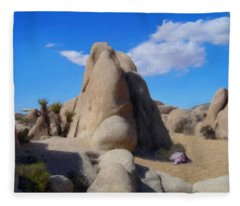 A Day In The Monument Fleece Blanket
