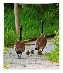 A Family Stroll Fleece Blanket