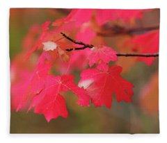 A Flash Of Autumn Fleece Blanket