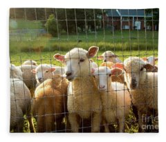 A Friendly Flock Fleece Blanket