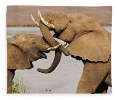 A Friendly Tussle Fleece Blanket