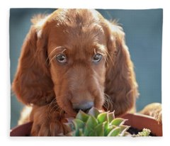 A Gardener Fleece Blanket