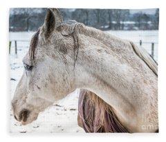 A Girlfriend Of The Horse Amigo Fleece Blanket