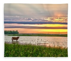A Highland Cow In The Lowlands Fleece Blanket