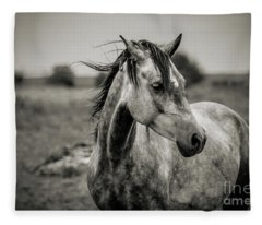 A Horse In Profile In Black And White Fleece Blanket
