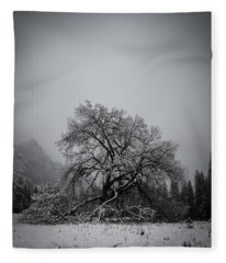 A Magic Tree Fleece Blanket