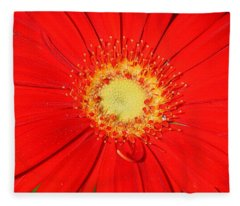 A Red Explosion Fleece Blanket